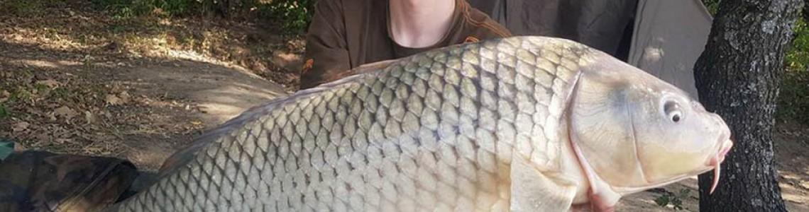 Годишен резултат от риболов на яз. Арбовия на сем. Шумкови